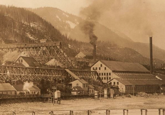 Gold Rush era production