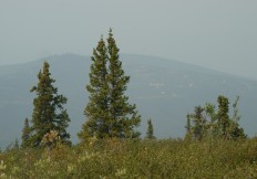 Lone Star Ridge